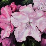 "Pink Porcelain 24"" x 30"" (oil on canvas)"