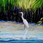 "Egret Mexican Estuary 22"" X 28"" (oil on canvas) Sold"