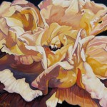 """Rose 20"""" x 24"""" (oil on canvas)"""