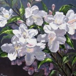 "Weigela 20"" x 24"" (oil on canvas)"