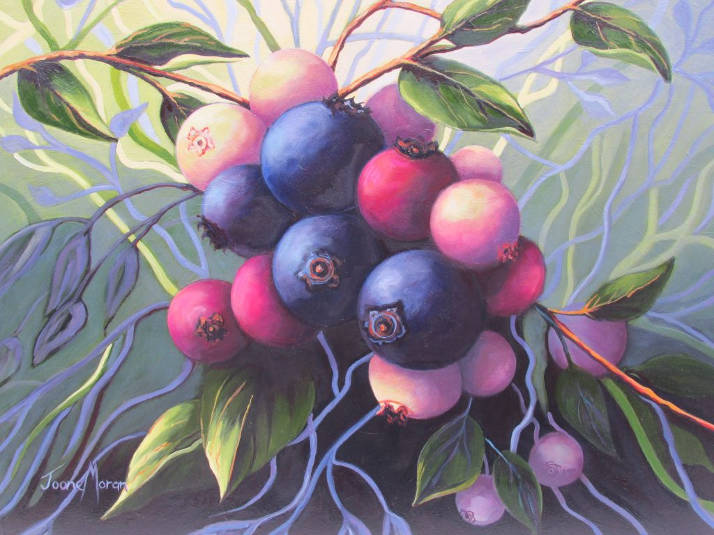 Wild Blueberries 3