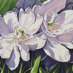 "White Peony Tulips 24"" x 30"" (oil on canvas)"