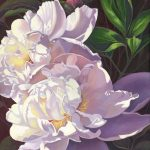 "Kathy's Peonies 24"" x 30"" (oil on canvas) Sold"